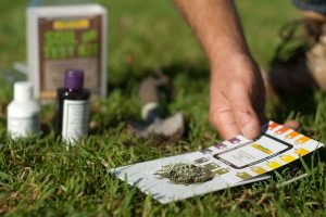 PH Testing Lime for Healthy Lawns