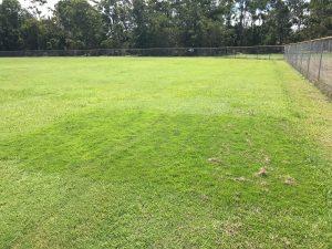 sir grange field
