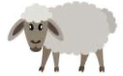 sheep manure on lawn